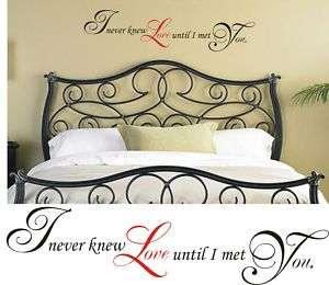 LOVE   TILL I MET YOU Wall Quote Words Verses Decals