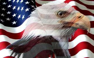 Vinyl graphic mural for Rv motorhome American Flag Eagl