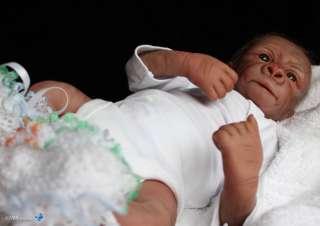 HBN* PROTOTYPE OOAK Reborn Baby Gorilla/Monkey ~ KIWI By Denise Pratt