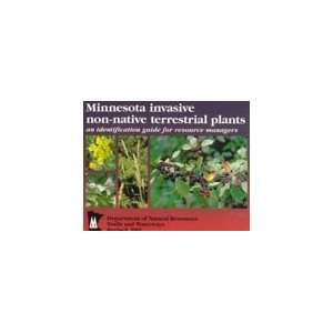 Minnesota Invasive Non Native Terrestrial Plants An