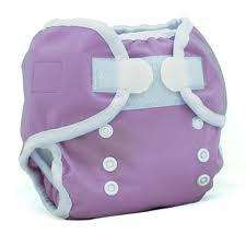 Thirsties Duo Wrap Cloth Diaper Cover & Stay Dry Duo Insert Orchid Sz