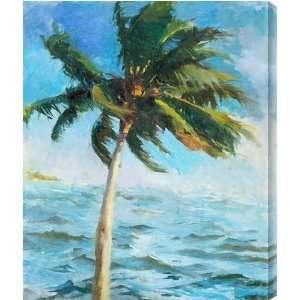 Biscayne Bay Coconut AZAK152A metal print