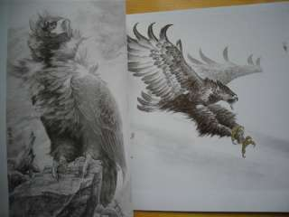 Hawk Eagle Falcon Chinese Painting Tattoo sketch Flash Reference China