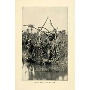 1901 Print Raising Water Nile Indigenous People Native
