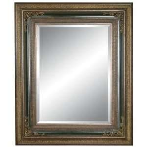 Imagination Mirrors 9198 DGP L Acanthus Woods Large Wall Mirror
