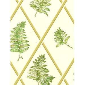 STROHEIM & ROMANNS COLOR GALLERY PEAR/MOSS Wallpaper  6918E 0M10