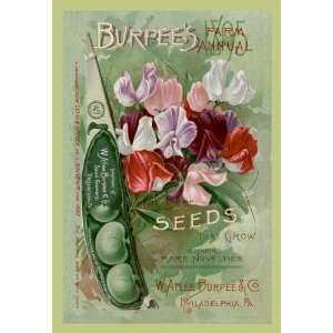 The Best Seeds That Grow 12x18 Giclee on canvas Home & Kitchen