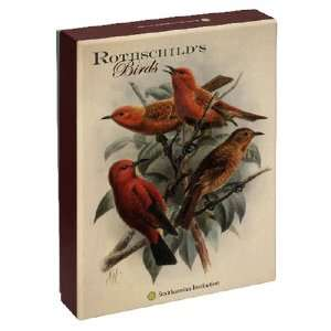 Pomegranate Rothschilds Birds Standard Boxed Note Card