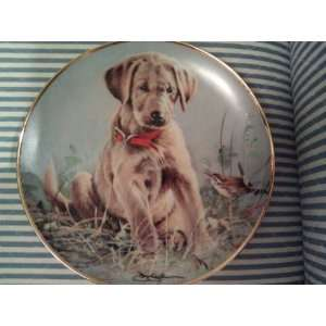Golden Retriever Puppy Collectible Plate Franklin Mint