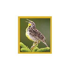 New Magnetic Bookmark Meadow Lark High Quality Modern