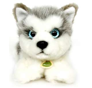 cute siberian husky plush animal toy stuffed pet