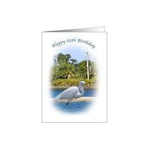 Birthday, 85th, Great White Egret Bird Card Toys & Games
