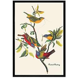 John James Audubon Painted Bunting Framed Print Art