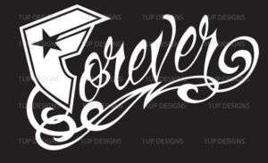 Forever Famous Straps and Stars Logo Decal/Sticker car