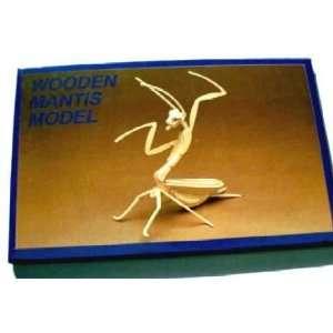 Wooden Model Kit 3D   Small Praying Mantis: Everything