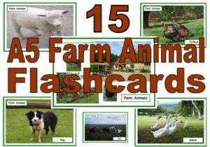 primary educational resource A5 FARM ANIMAL flashcards