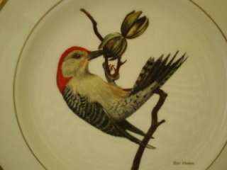 Complete Set of 12 Spode American Songbirds Plates by Ray Harm