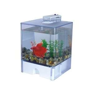 Betta fish tank aqua box bowl led light usb powered 3 l for Betta fish tanks amazon