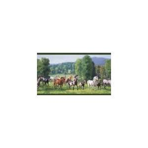 Wild Horses Green Wallpaper Border in For Men Only Home Improvement