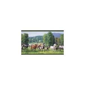 Wild Horses Green Wallpaper Border in For Men Only