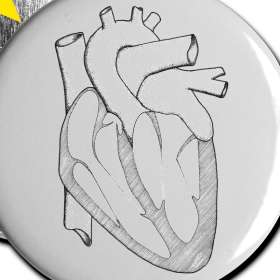 Anatomically Correct Heart   Large Badges  the woofing dog  geeky