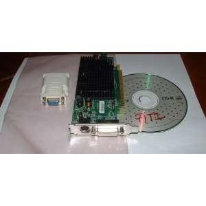 Low Profile Video Card + DVI VGA Adapter + Driver CD: Electronics